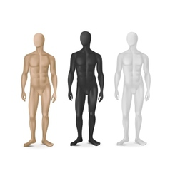 Set of Three Male Mannequins vector