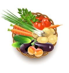 Wicker dish with vegetables vector