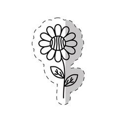 daisy flower decoration cut line vector image vector image