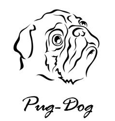 Pug dog vector