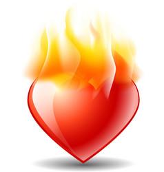Burning heart vector image