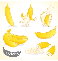 Set of banana in various styles format vector
