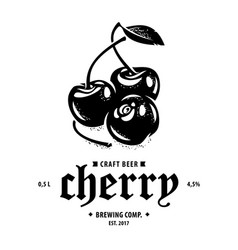 cherry fruits in black and white vintage style vector image