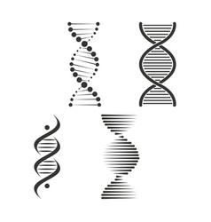 Dna icon set chromosome strand symbol vector