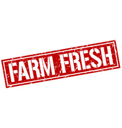 Farm fresh square grunge stamp vector
