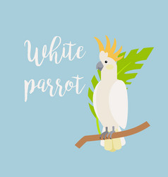 exotic tropical bird white parrot vector image vector image