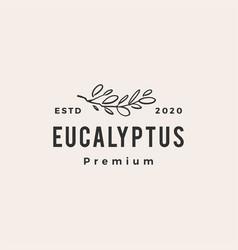 eucalyptus hipster vintage logo icon vector image