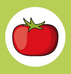 Tomato healthy fresh image vector