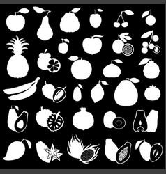 fruits set image on black background vector image