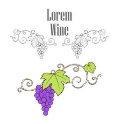 Grape vine branches ornament vector image