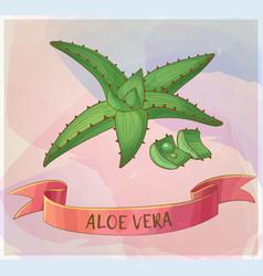 Aloe vera plant cartoon icon vector