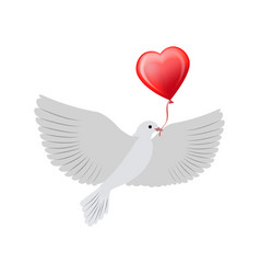 dove flying with heart balloon vector image