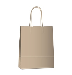 Empty shopping brown bag on white vector image