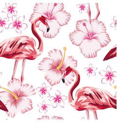 flamingo pink hibiscus plumeria white background vector image
