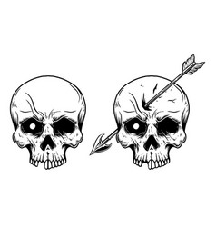 human skull with arrow in head design element for vector image