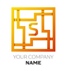 Letter s symbol in the colorful square maze vector