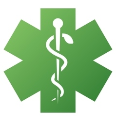 Medical life star gradient icon vector