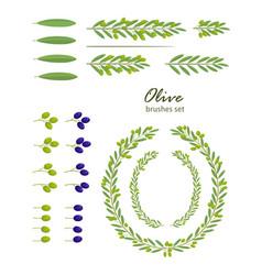olive brushes set vector image