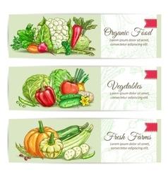 Organic vegetables sketch banner set design vector image