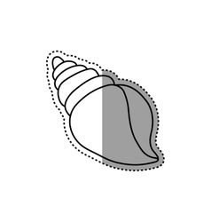 Sea shell isolated vector