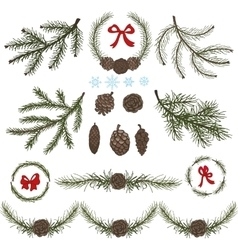 Spruce branches with pine conesred bow set vector