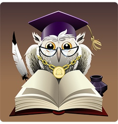 Owl in bachelor hat vector image vector image