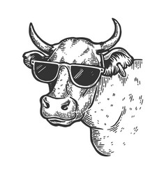 cow animal in sunglasses engraving vector image