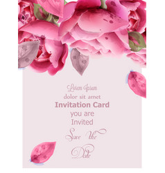 pink roses watercolor invitation card vector image