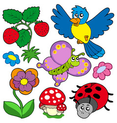 spring time nature collection vector image