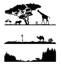 taiga desert and savannah vector image