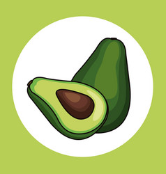 Avocado healthy fresh image vector