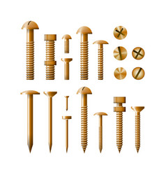 set of fasteners golden color vector image