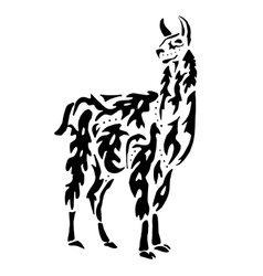 Lama drawing for coloring vector image vector image