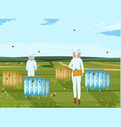 beekeepers working organic product nature vector image