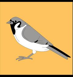 Bird sparrow flat style vector