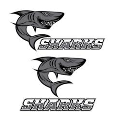 Cartoon aggressive shark for sport team vector