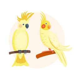 cartoon tropical yellow parrot wild animal bird vector image
