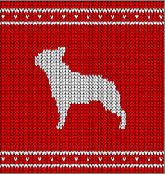 christmas knitted pattern with french bulldog vector image