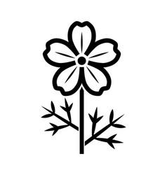 cosmos flower icon vector image