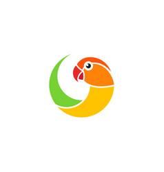 exotic parrot lovebird vector image