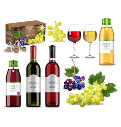 grapes drinks set collection with wine juice and vector image