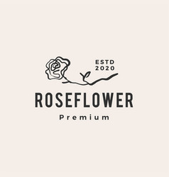 rose flower hipster vintage logo icon vector image