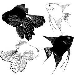 set of aquarium fish vector image