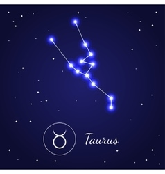 Taurus Zodiac Sign Stars on the Cosmic Sky vector image