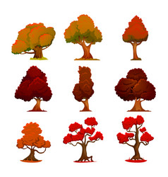 autumn tree cartoon style stylized trees vector image