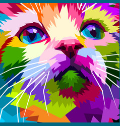 close up of face beautiful cat vector image