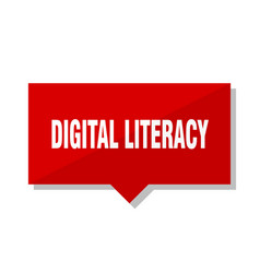 Digital literacy red tag vector
