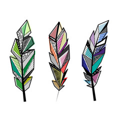 feathers color lines set vector image
