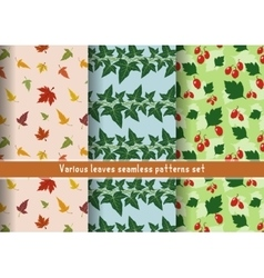 Leaves patterns set vector