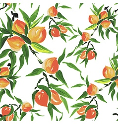 peach seamless pattern vector image